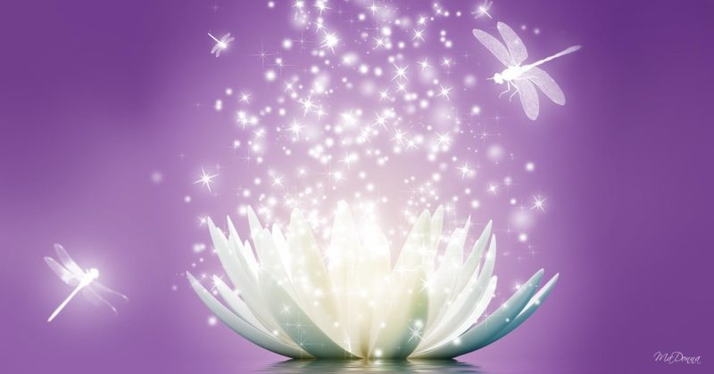 """July 21-22, 2018 """"I AM Activating My Crystalline Lightbody"""" class in Madison, WI"""
